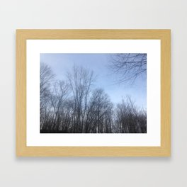Through the Trees Framed Art Print