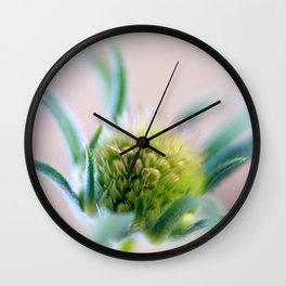 Green Points Wall Clock