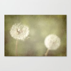 Sweet Dandelions  Canvas Print