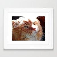 tigger Framed Art Prints featuring Tigger by ACamp