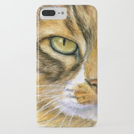 Calico Cat 817 iPhone Case