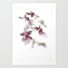 Orchid Dreams Art Print