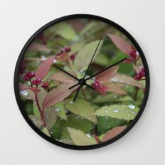 Bush Wall Clock