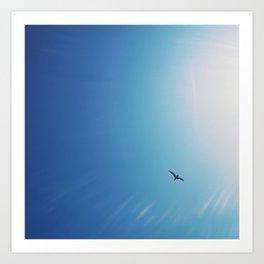 Flying to the sun Art Print