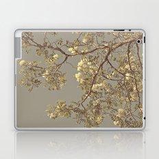 Under the Honey Locust Tree Laptop & iPad Skin