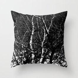 Bare Winter Trees Throw Pillow
