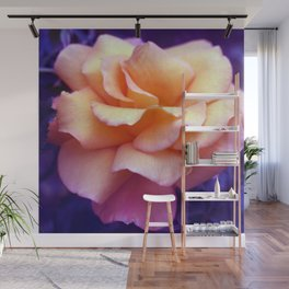 bed of roses: purple rose of cairo  Wall Mural