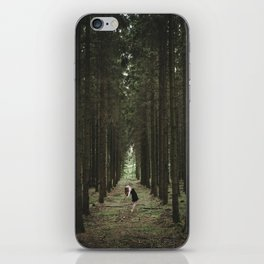 The Woods of St Olof 2 iPhone Skin