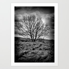 Alone On The Edge Art Print