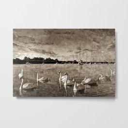 Serene Swans Watercolor  Metal Print