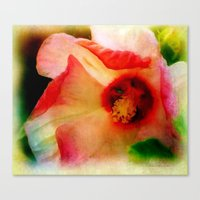 hibiscus Canvas Prints featuring Hibiscus by Christine Belanger