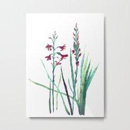 Festive Gouache Watercolor Watsonia Plant Metal Print