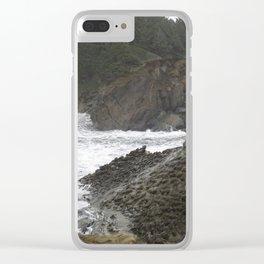 Shore Acres Park Clear iPhone Case