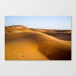Sands of Sahara Canvas Print