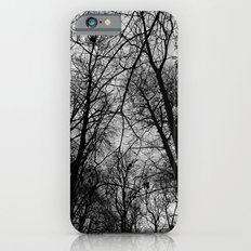 Trees at Mottisfont iPhone 6s Slim Case