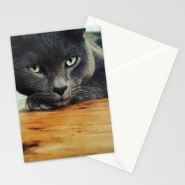 Russian Blue Stationery Cards