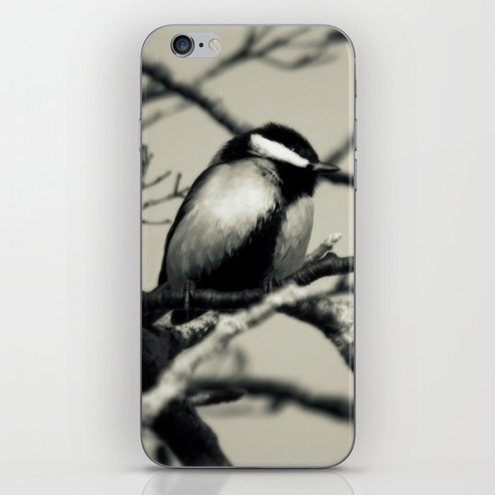 A great view iPhone Skin