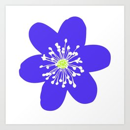 Flower Anemone Hepatica Art Print