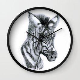 Zebra Baby in Kruger Park Wall Clock