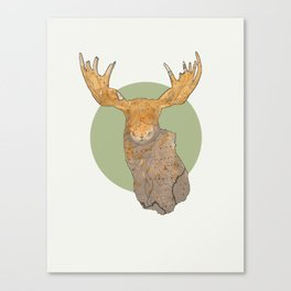 Canadian Moose Canvas Print
