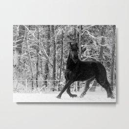 Friesian Mare in Snow Metal Print
