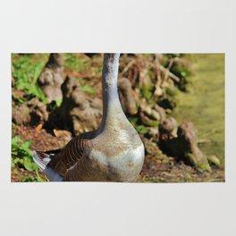 Graylag Goose Rug