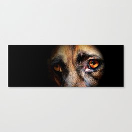 Looking Into My Soul Canvas Print