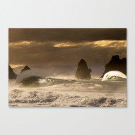 Cyclone Pam Canvas Print