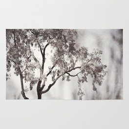 Black and White Tree Branches Photography, Grey Nature Neutral Branch, Gray Mysterious Dark Spooky Rug