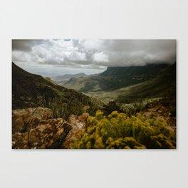 Vibrant Mountain Range Landscape, Big Bend Canvas Print