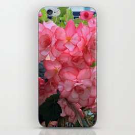 Pink flower in Butchart's garden iPhone Skin