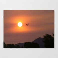 Fireflight Canvas Print