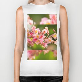 Aesculus red chestnut tree blossoms Biker Tank