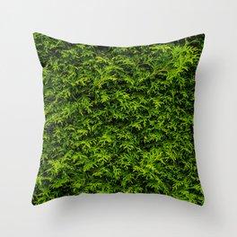 Coniferous Throw Pillow