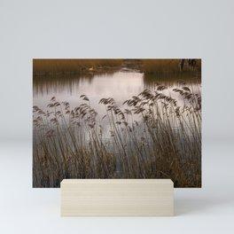 Wetlands at Far Ings Mini Art Print
