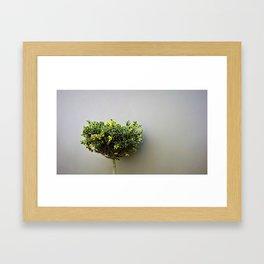 Cool Leaves Framed Art Print