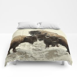 American Buffalo Comforters