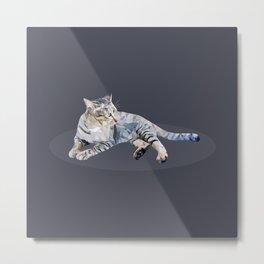cat lay down Metal Print