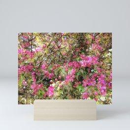 Springtime, purple blossoms Mini Art Print