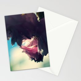 sakura - close up - two Stationery Cards