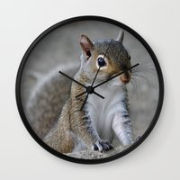 squirrel Wall Clocks featuring Squirrel by Charlene McCoy