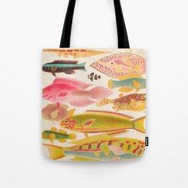 Colorful Tropical Fishes Vintage Sea Life Illustration Tote Bag