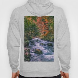 Mountain river Hoody