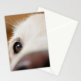 Fluffy Tetriever Close up Stationery Cards