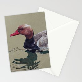 Red Crested Pochard (Netta Rufina) Colored Pencils Artwork Stationery Cards