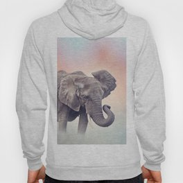 African Elephant walking in the grassland at sunset Hoody
