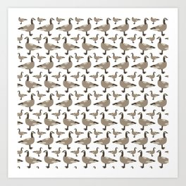 A Gaggle of Geese Art Print