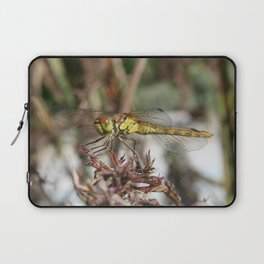 Brown Dragonfly On Husks With Garden Background Laptop Sleeve