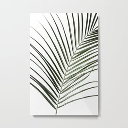 Palm Leaves 8 Metal Print