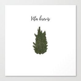 Life is short: vita brevis Canvas Print